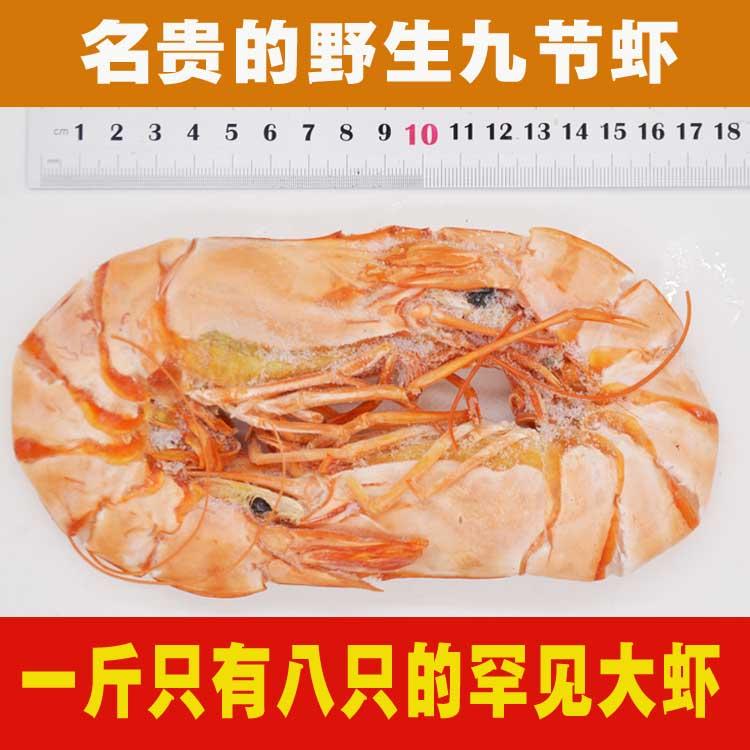 特大九节虾干 野生斑节虾干 正纯竹节虾干 名贵虾干